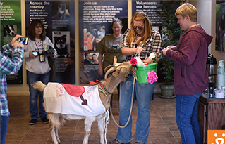 https://bestfriends.org/People%20interacting%20with%20a%20goat%20at%20Best%20Friends%20National%20Conference