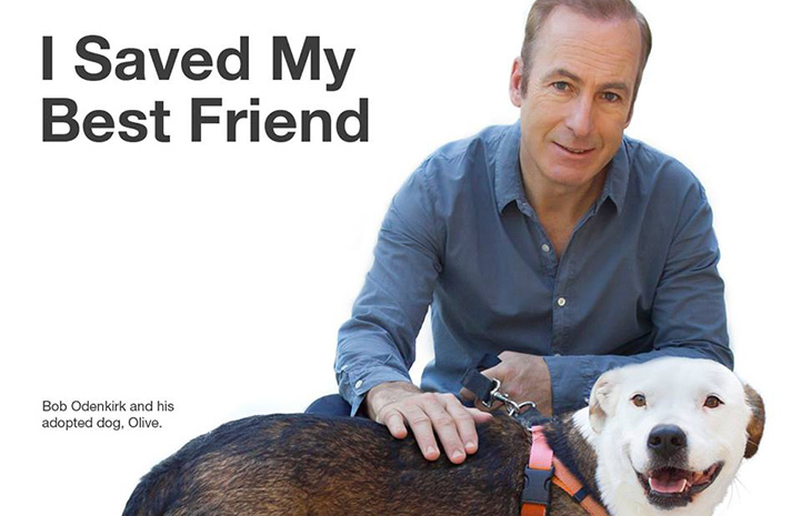 Bob Odenkirk with his adopted dog Olive