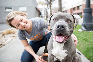 Smiling woman behind a smiling gray and white pit bull type dog