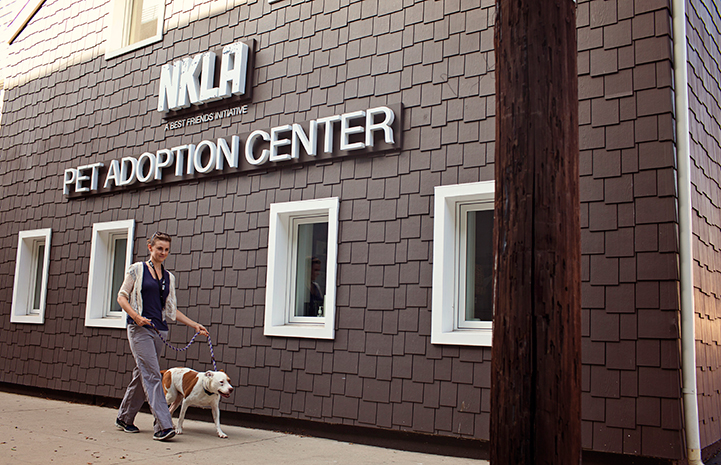 Person walking a dog outside the NKLA Pet Adoption Center