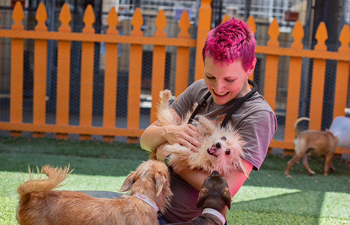 Woman with magenta colored hair smiling and holding a scruffy terrier mix dog