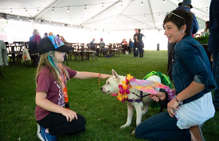 Dog at Best Friends Animal Sanctuary socializes with guests at event