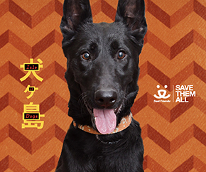 Image of black dog promoting Fox Searchlight and the Isle of Dogs movie partnership with Best Friends