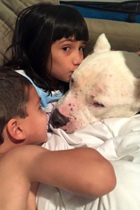 Two children snuggling with and kissing Walter the white mastiff their adopted dog