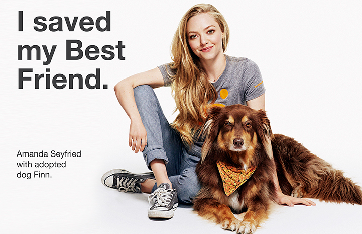 https://bestfriends.org/Amanda%20Seyfried%20with%20her%20adopted%20dog%20Finn