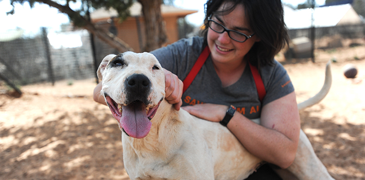 Best Friends Animal Rescue Jobs & Careers | Best Friends