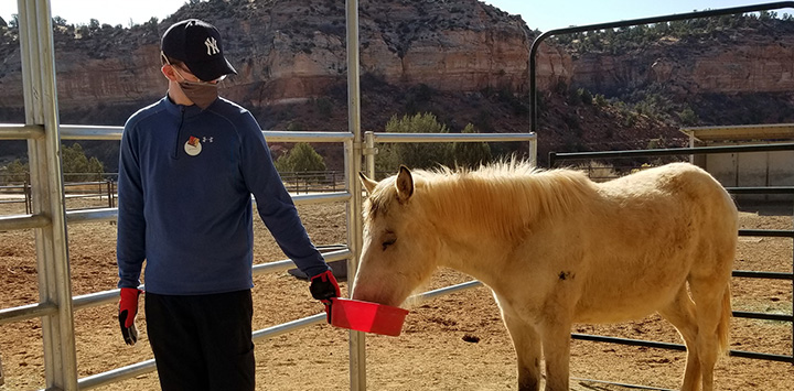 https://bestfriends.org/Volunteer%20giving%20water%20to%20a%20horse%20in%20a%20bowl
