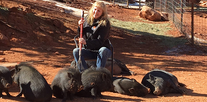 https://bestfriends.org/Volunteer%20surrounded%20by%20pigs%20and%20scratching%20their%20backs%20with%20a%20rake