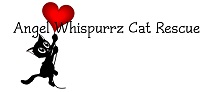 Angel Whispurrz Cat Rescue Inc