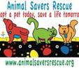 "Animal Savers Rescue (Doraville, Georgia) logo with dog, cat and tagline ""Adopt a pet today, save a life tomorrow"""