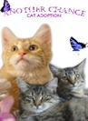 Another Chance Cat Adoption (Kent, Washington): Purple logo with orange and grey cats under logo