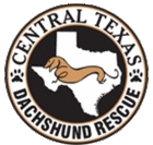 Central Texas Dachshund Rescue (Austin, Texas) logo is a circle with the state of Texas and a dachshund inside