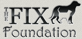 The Fix Foundation