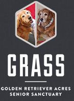 Golden Retriever Acres Senior Sanctuary (Spring, Texas) logo of golden retriever photos and text of GRASS
