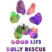 Good Lif3 Bully Rescue (Tomball, Texas) logo is a colorful pawprint with a cityscape in the bottom section of the paw
