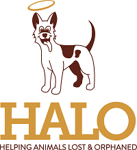 Helping Animals Lost and Orphaned - HALO (Xenia, Ohio) logo of dog with halo
