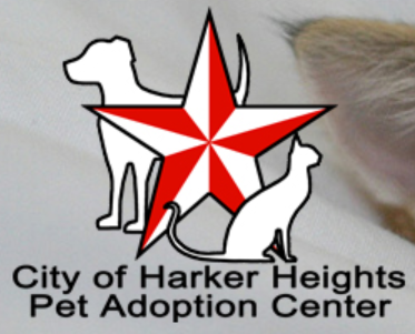 Harker Heights Pet Adoption Center (Harker Heights, Texas) logo is red and white star with white dog behind and cat in front