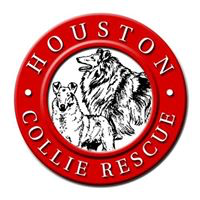 Houston Collie Rescue (Stafford, Texas) logo is red circle with a white center containing a sketch of 2 Collies