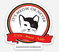 It's Meow Or Never (Havana, Florida) logo of ear tipped cat