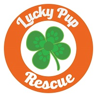 Lucky Pup Rescue SC (Greenville, South Carolina) logo of green shamrock, orange circle and Lucky Pup Rescue