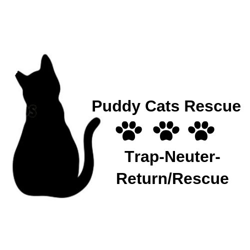 Puddy Cats Rescue (Fort Washington, Maryland) logo cat and three pawprints