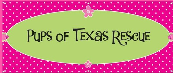 Pups of Texas Rescue (Kingwood, Texas) logo is a pink background with polka dots and the org name on a green ellipsis
