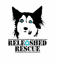 Releashed Rescue