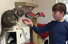 Thirteen-year-old boy connects with cats