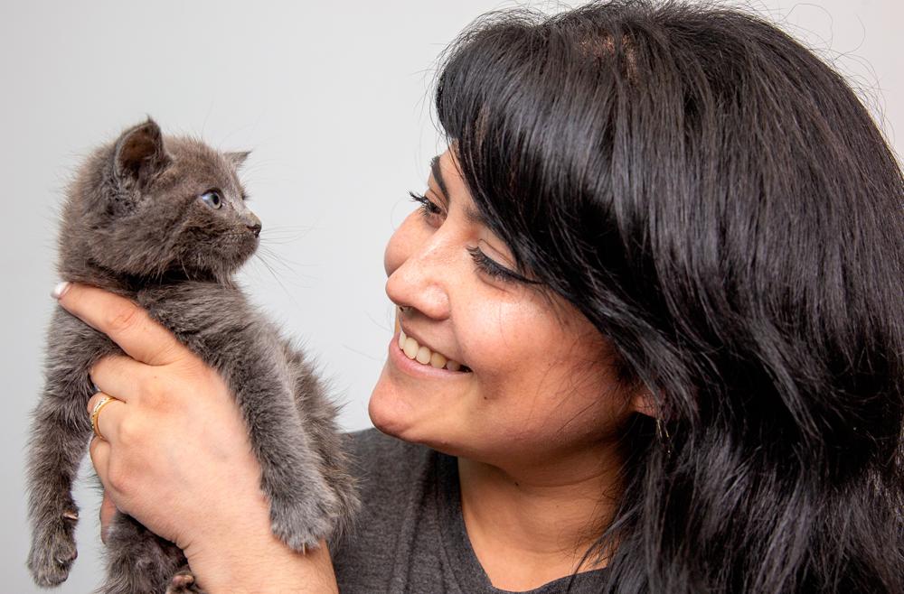 Woman holding small gray kitten