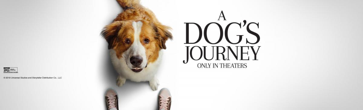 Dog standing at a person's feet promotion of A DOG'S JOURNEY movie promotion
