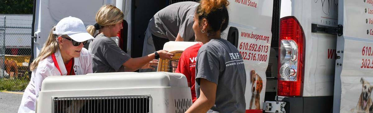 People loading crates holding animals into a transport van to get out of the path of Hurricane Dorian