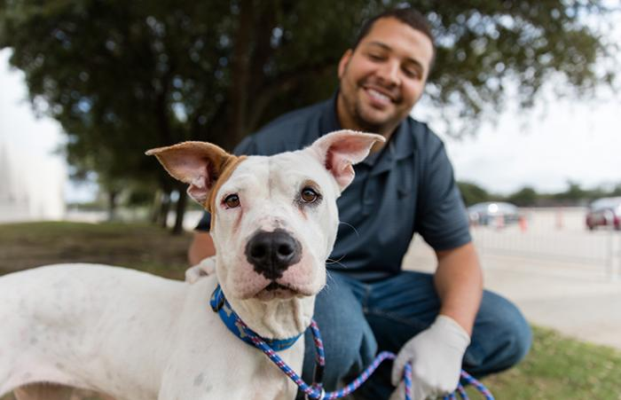 Smiling man helping at the NRG Arena behind a white dog after Hurricane Harvey
