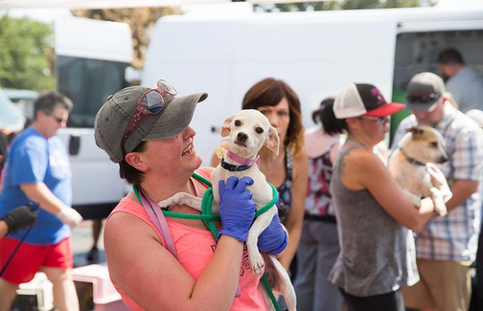 Woman holding white Chihuahua-type dog as part of transport following Hurricane Harvey