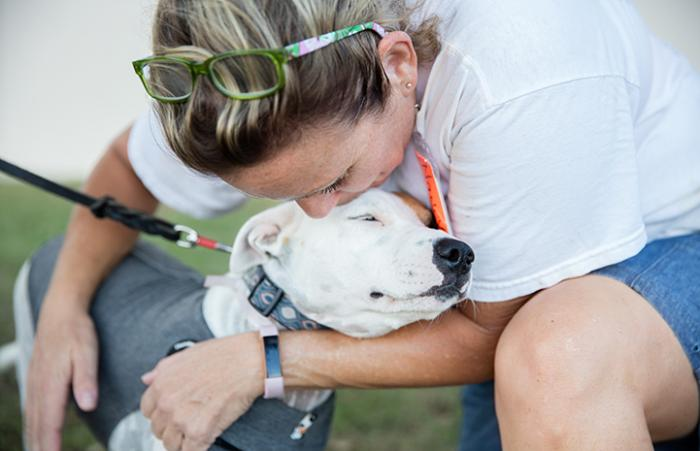 Woman hugging a rescued white pit bull type dog wearing a sweater after Hurricane Harvey