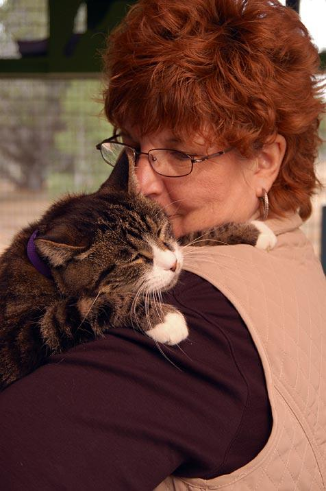 Billy the former feral cat with his adopter
