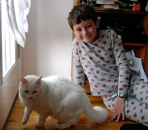 Sequin the bashful, deaf white cat with boy