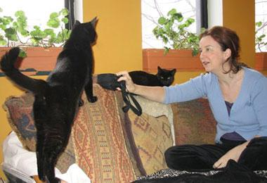 Anne Berrigan, a feral cat trapper, and her two former street cats