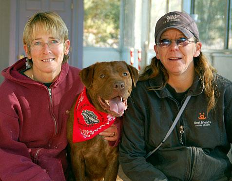 Dobie the narcotics dog, who is chocolate Lab and pit bull mix, with trainers
