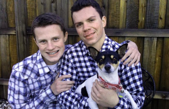 Betsey the petite rat terrier with two boys