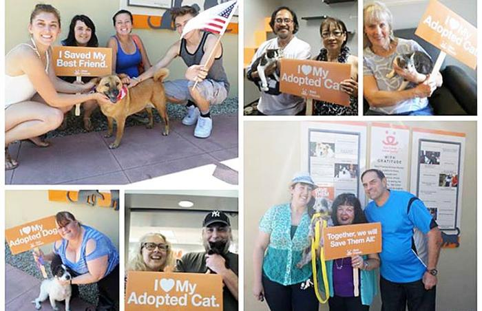 Successful 4th of July adoptions in Los Angeles