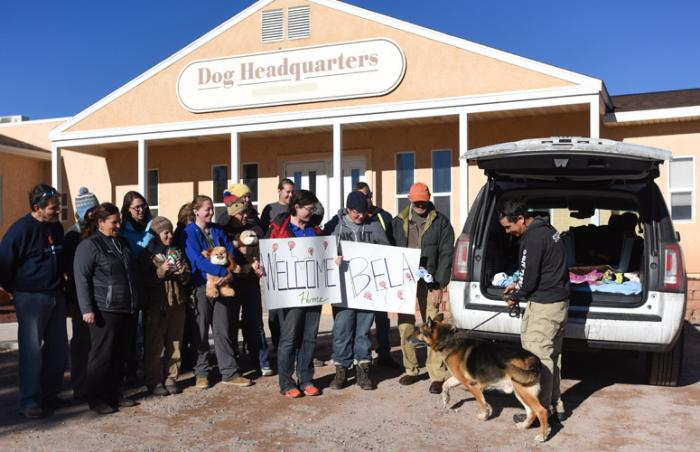 Bela the dog arrives at Dogtown at Best Friends Animal Sanctuary