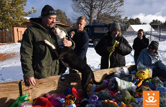 Sidney the dog visits the trailer piled high with toys, blankets and treats
