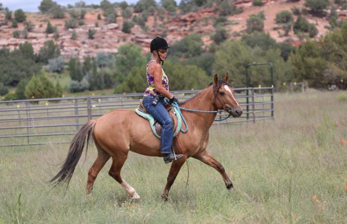 A woman rides Chuck the horse