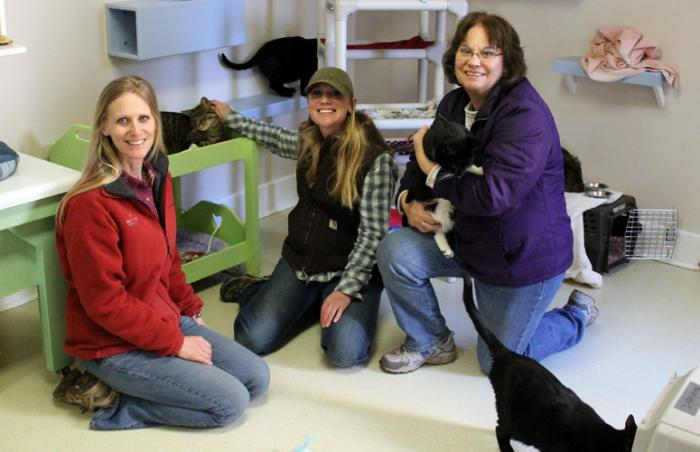 Family volunteers -- Erika Kuc, Katy Jordan, and Linda Schiele -- at Cat World at Best Friends Animal Sanctuary