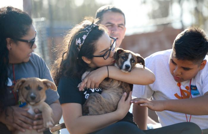 Families join forces to help homeless pets