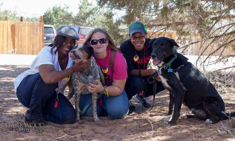 Inner city kids working with shelter dogs
