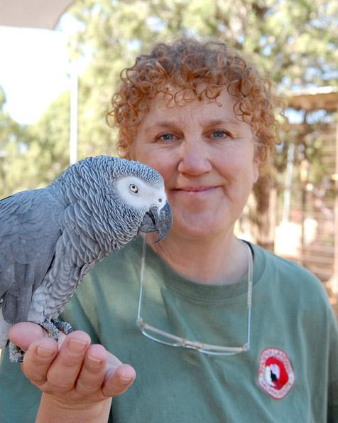 Ann Brooks, founder of the parrot rescue called Phoenix Landing, holding a parrot