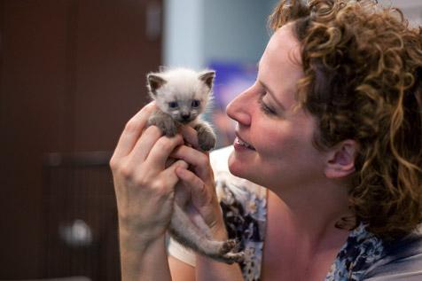 Woman holding a neonatal kitten