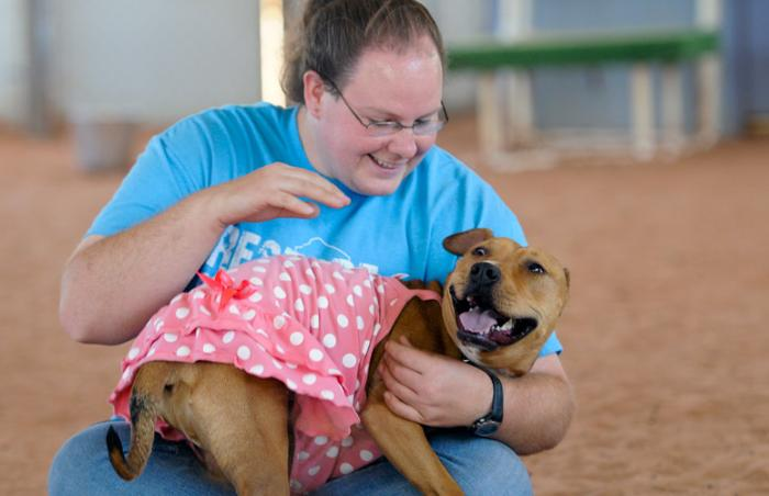 Fiesta the dog from a dogfighting bust wearing a pink polka dot dress and Alyssa share a moment