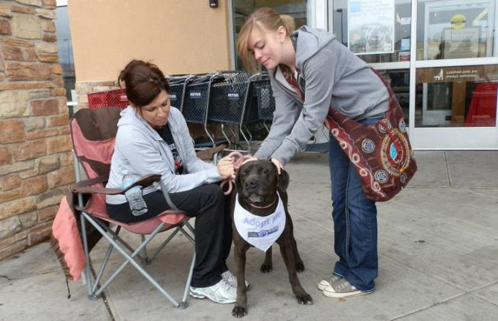 Volunteer Kimberly Bean at an adoption event with Jana the dog who is now adopted